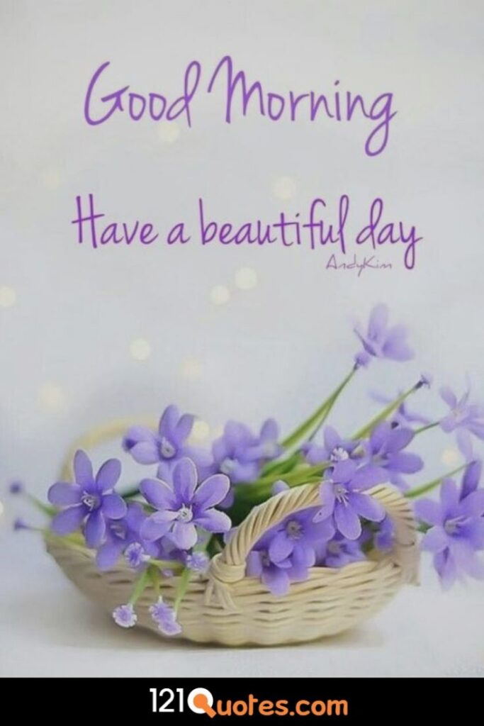 Beautiful good morning images of flowers
