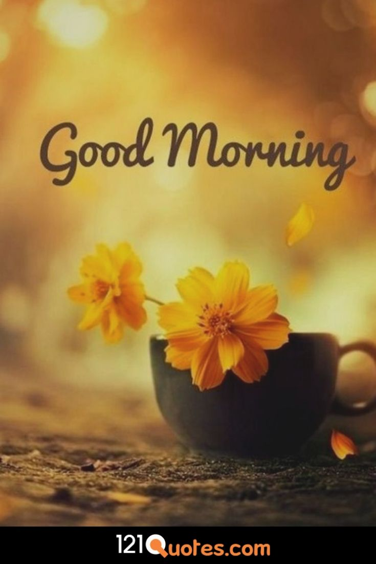 Good Morning Images with Yellow Flower
