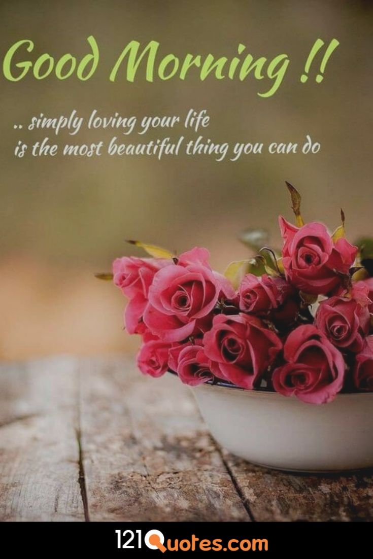 100 Most Romantic Good Morning Images With Rose Flowers