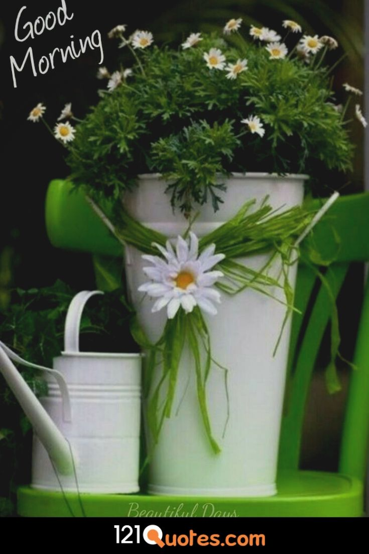 Good Morning images with flower pot