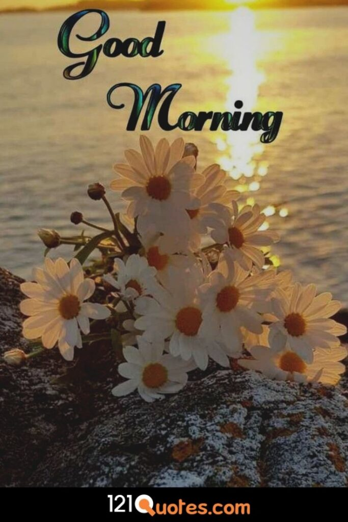Good Morning images with sunrising and sun flower