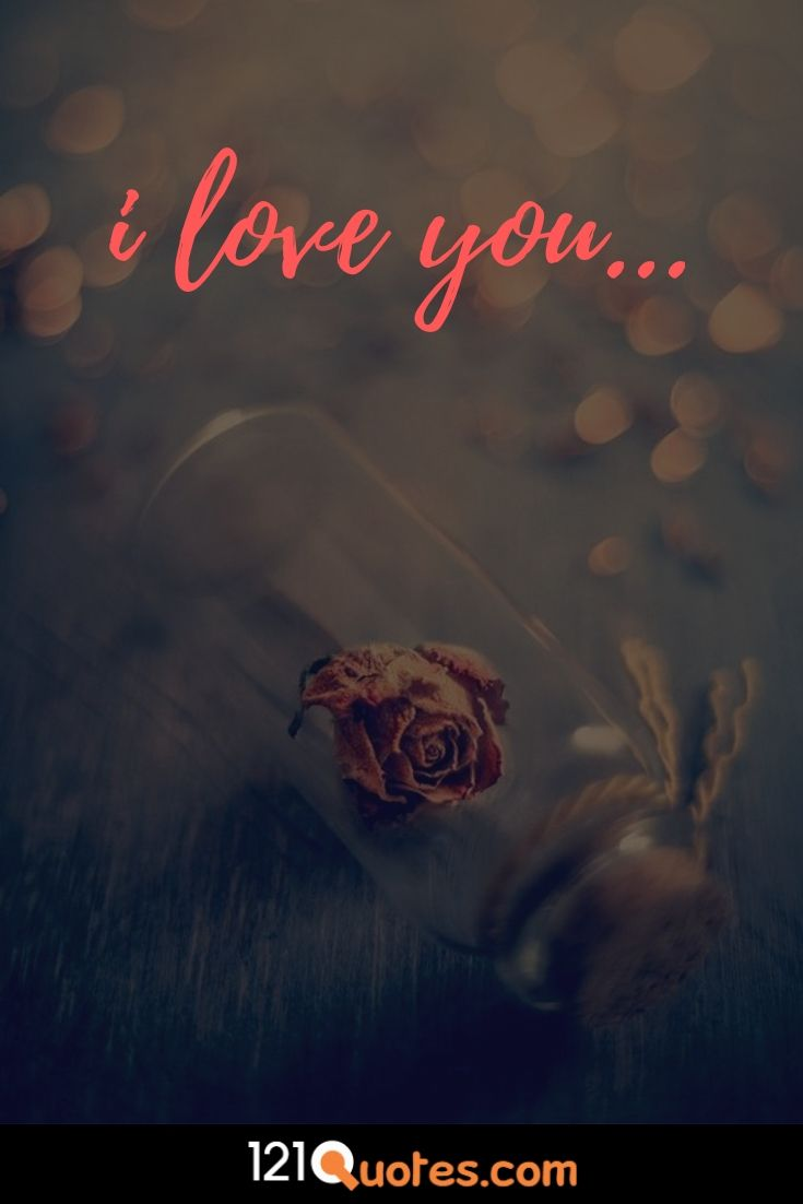 i love you image with red rose