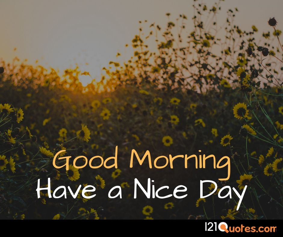 images of good morning wishes free download