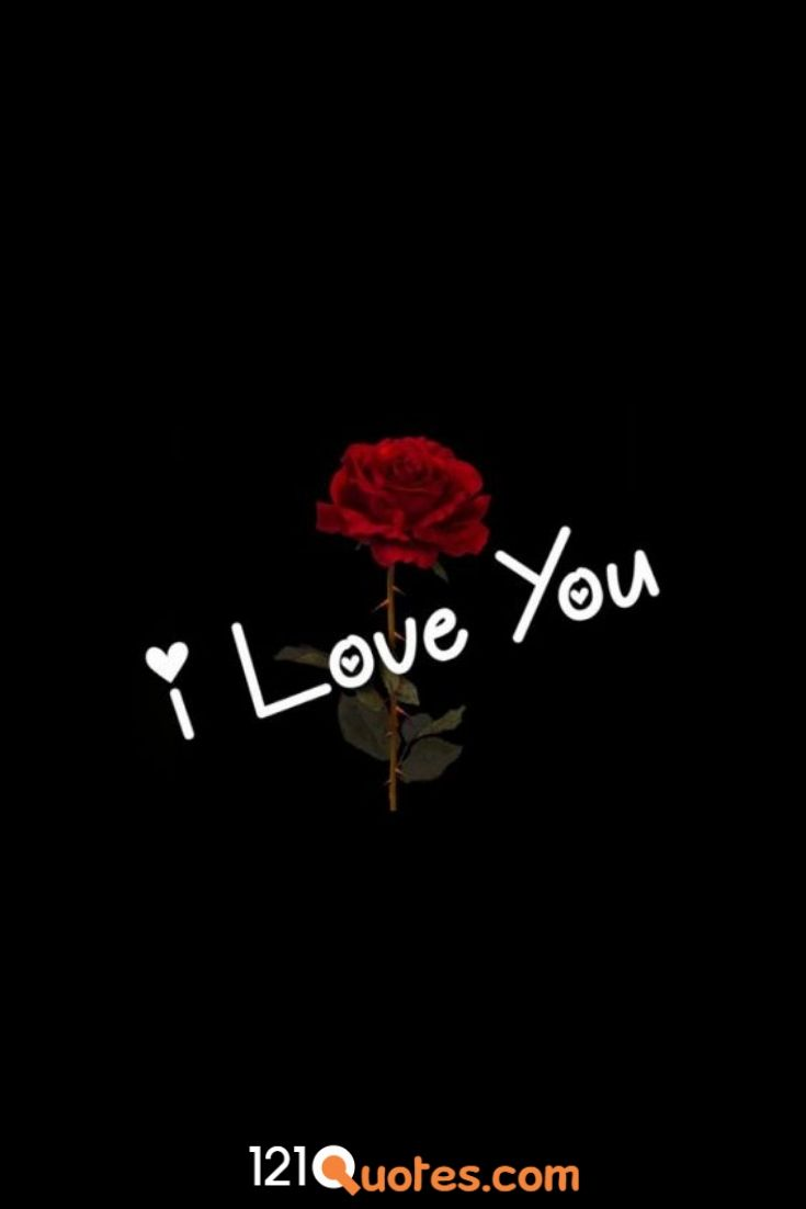 picture of red rose saying i love you