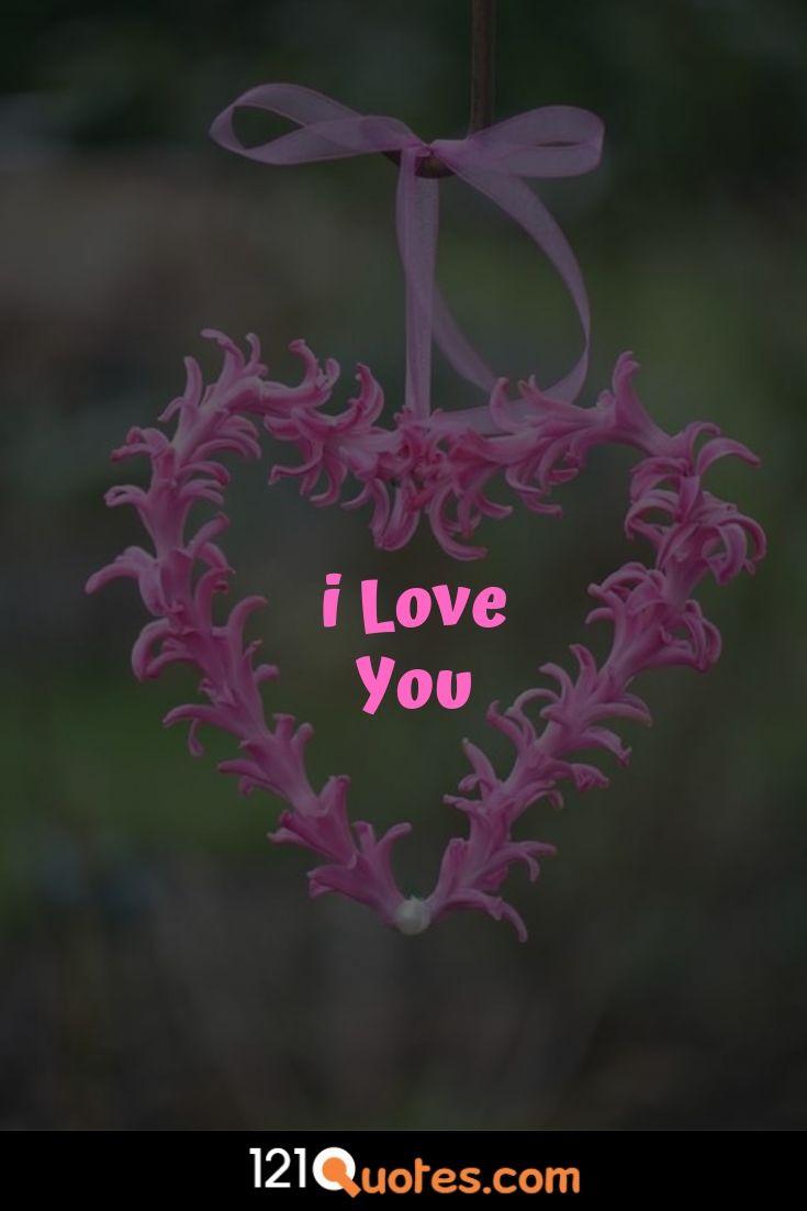 rose pic i love u