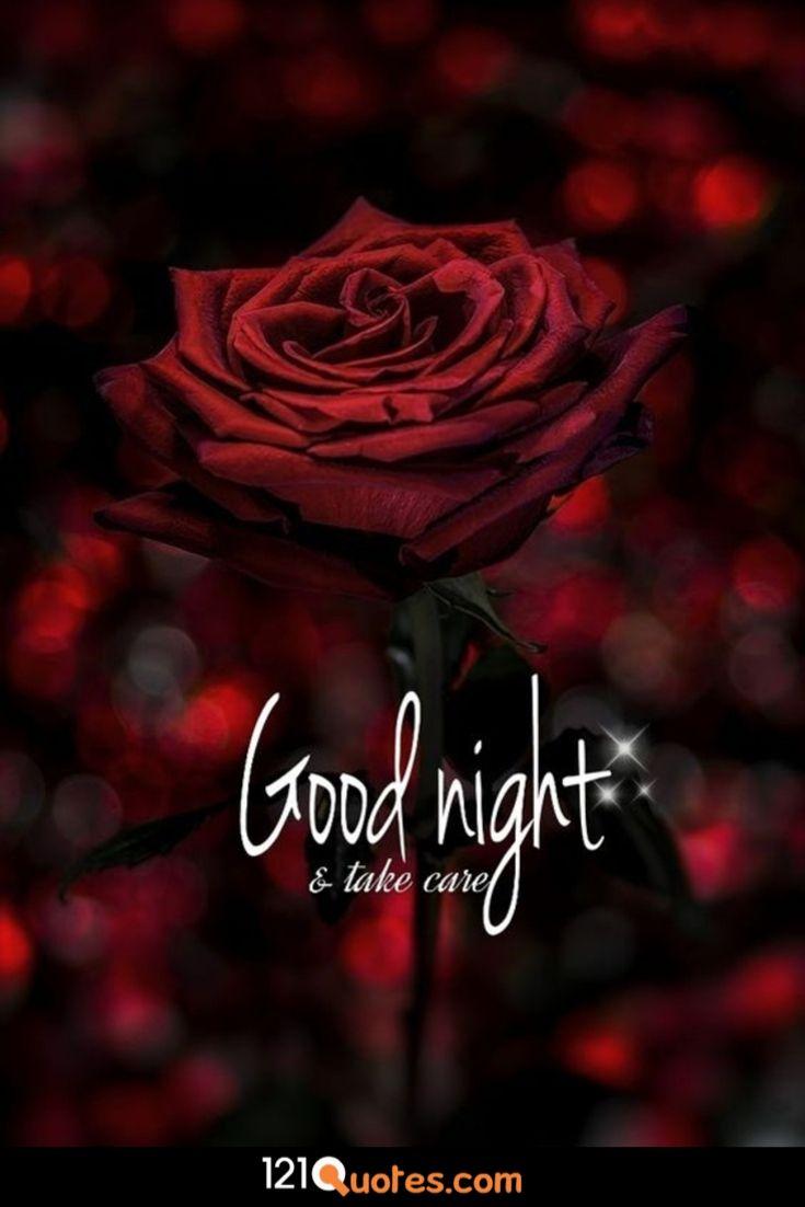 beautiful flower romantic bedroom good night image
