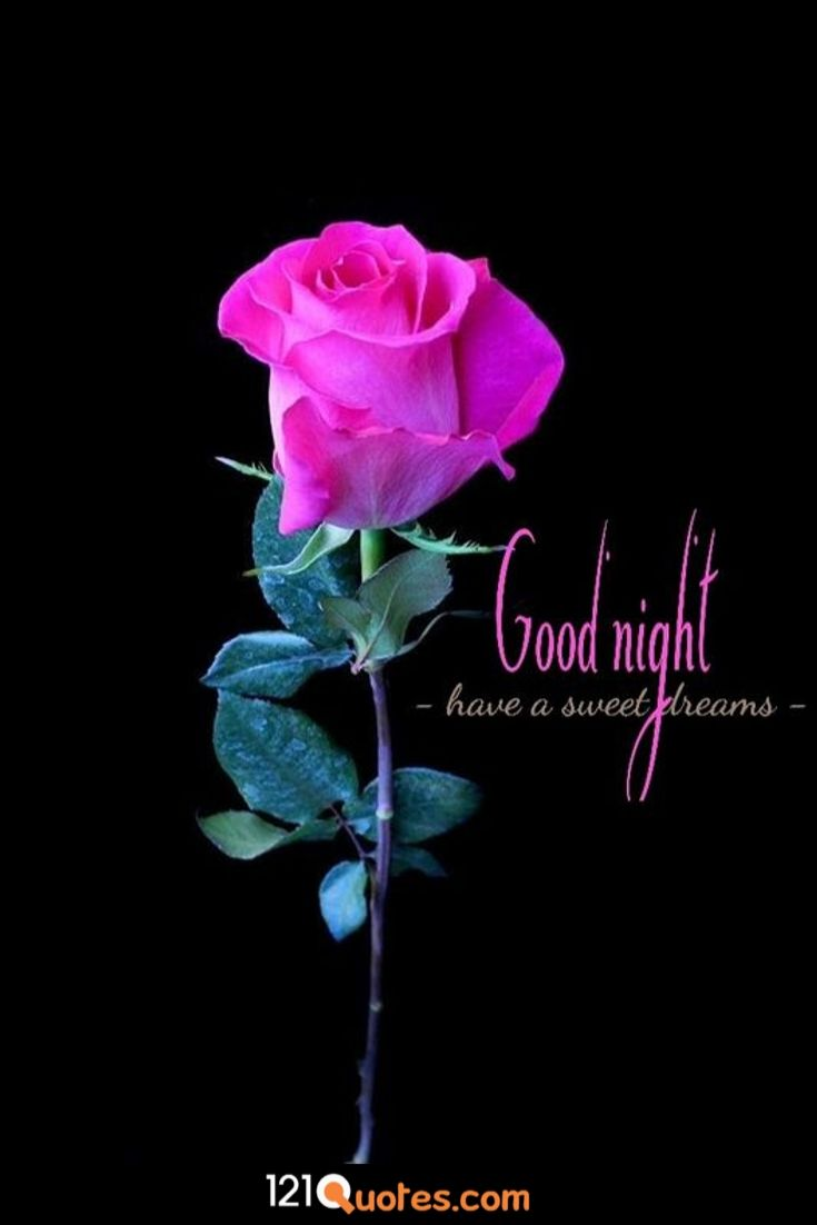 good night image download for whatsapp love