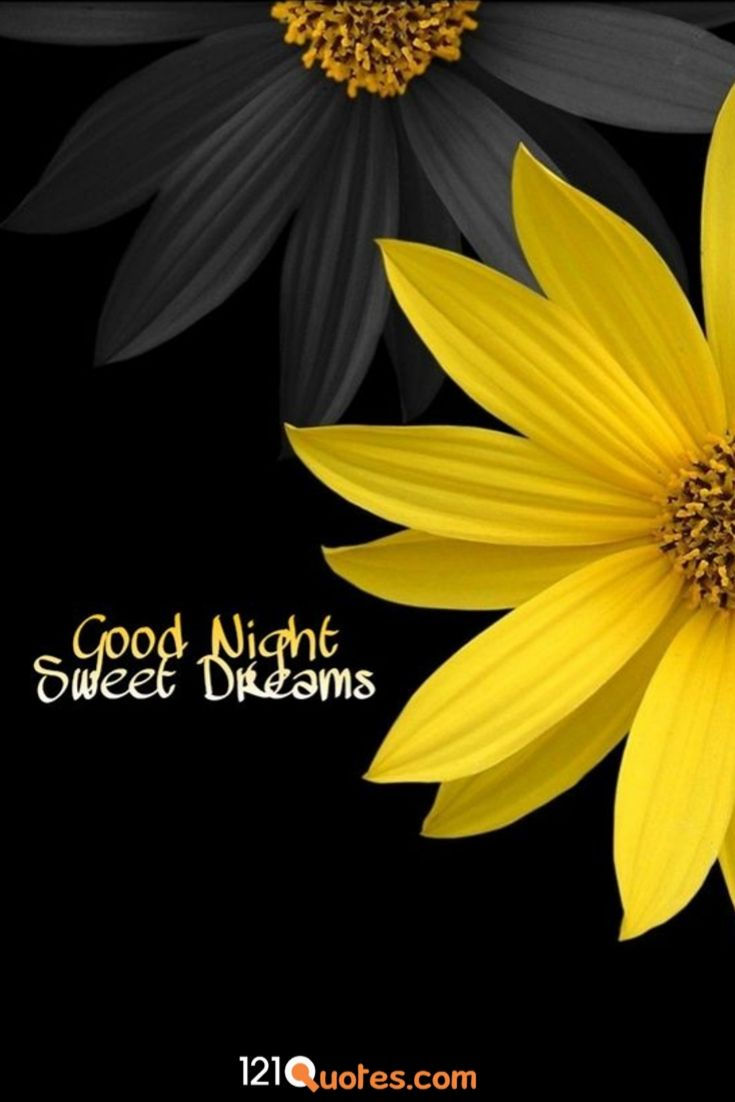 good night image good night image