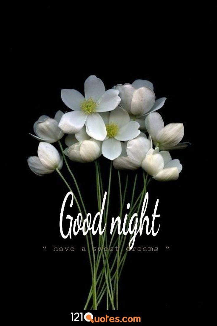 good night my best friend hd wallpaper