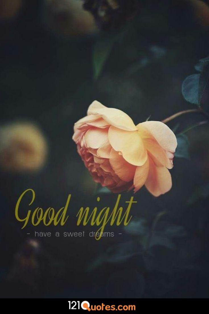 good night romantic special whatsapp video pics wallpaper