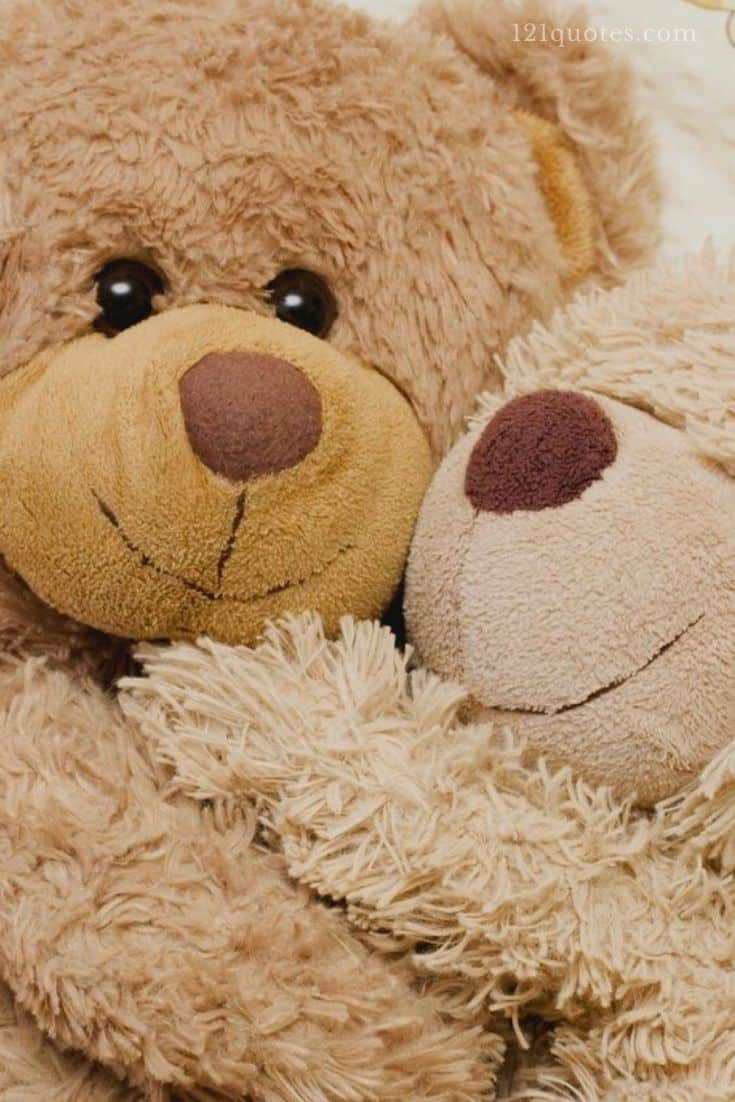 beautiful teddy bear images free download