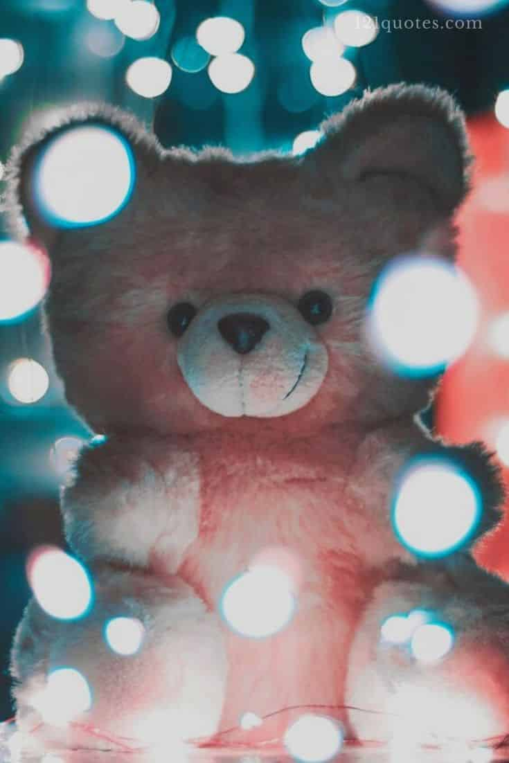 big teddy bear images