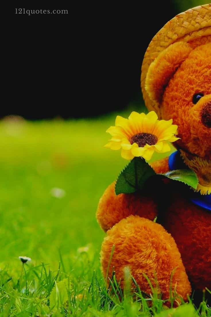 cute love teddy bear images
