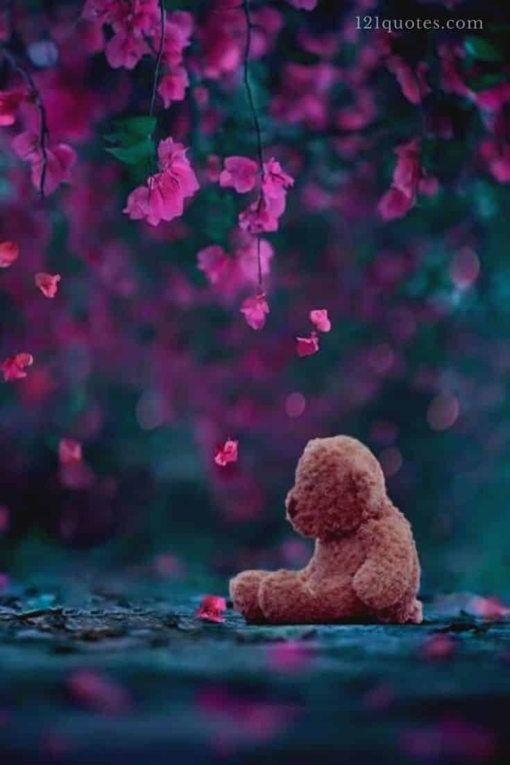 cute teddy bear images for facebook profile picture