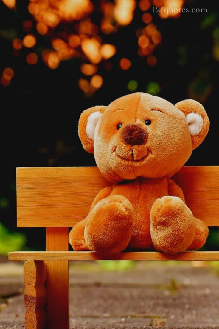 cute teddy bear images hd