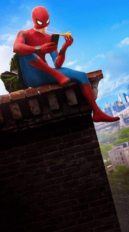 free spiderman wallpaper