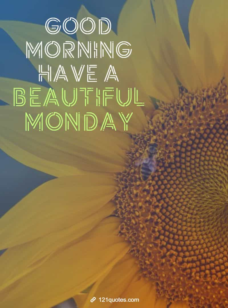 good morning monday wallpaper