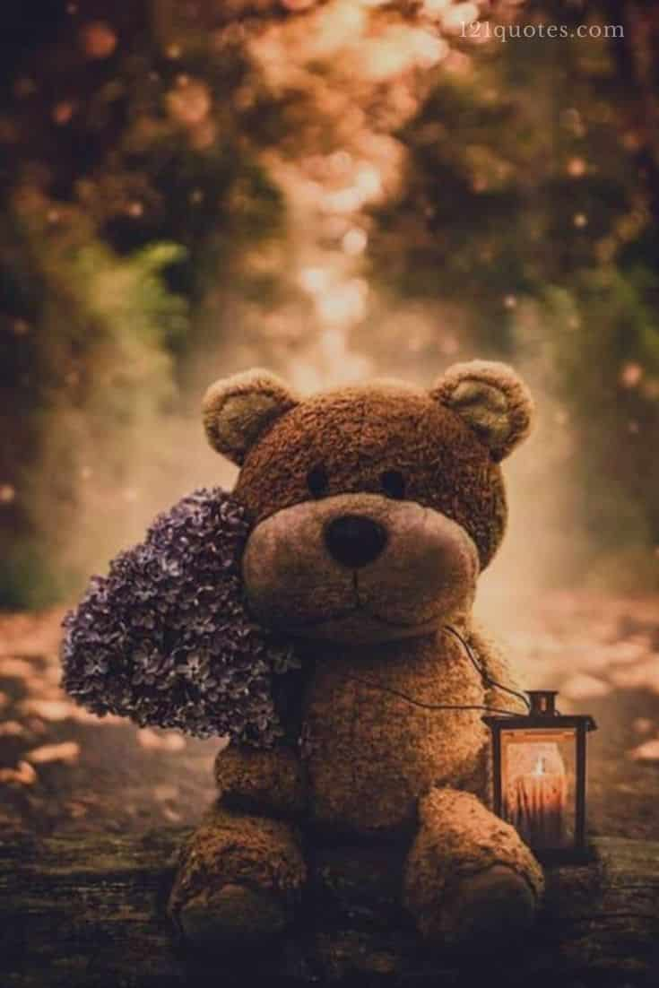 good morning teddy bear images for facebook