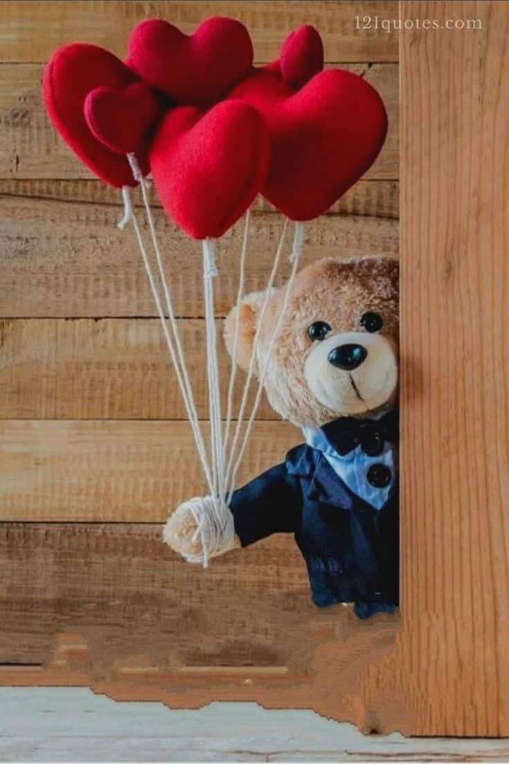 lovely teddy bear images