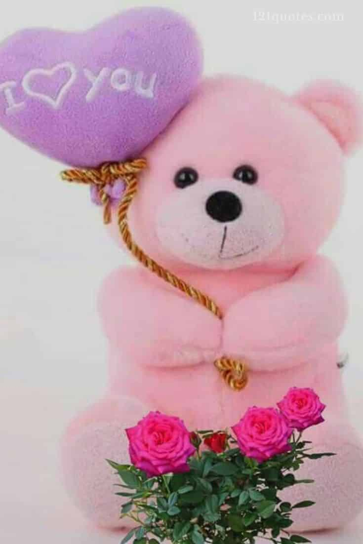 pink teddy bear images free download
