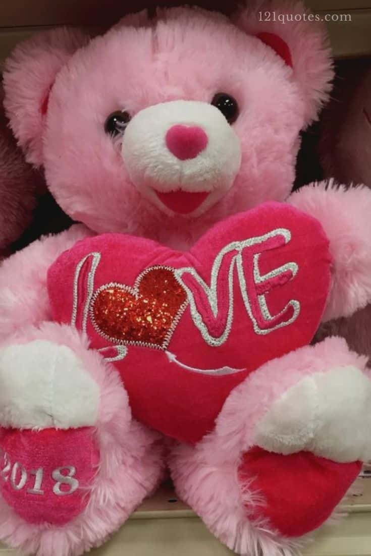pink teddy bear images