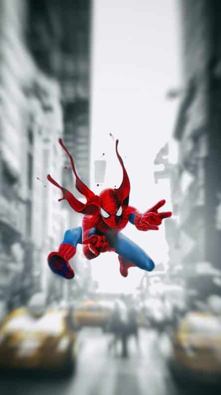 spider hd wallpaper