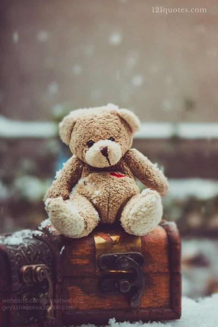 teddy bear images for facebook timeline cover