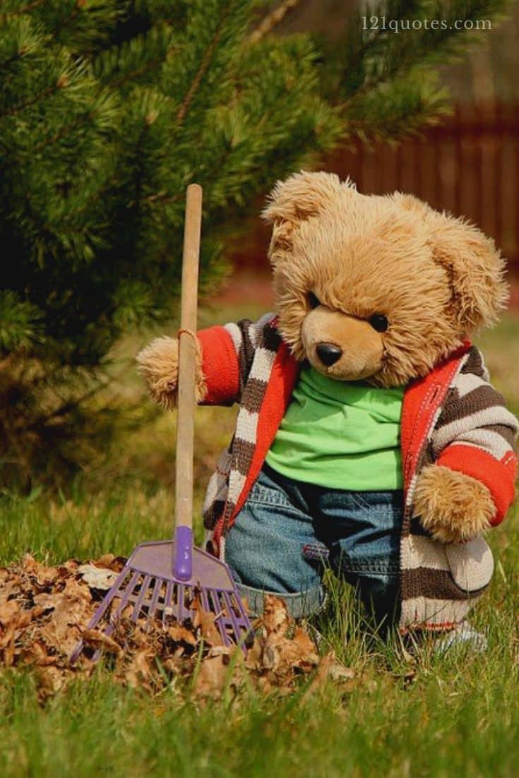 teddy bear images hd