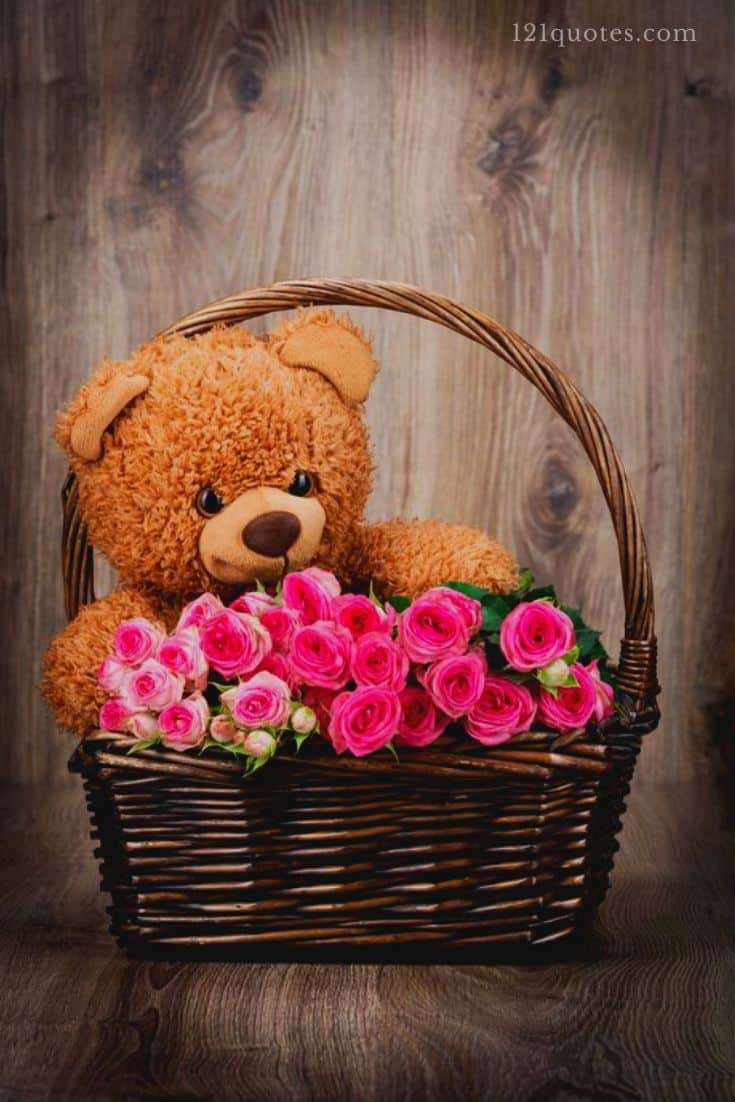 teddy bear images with roses