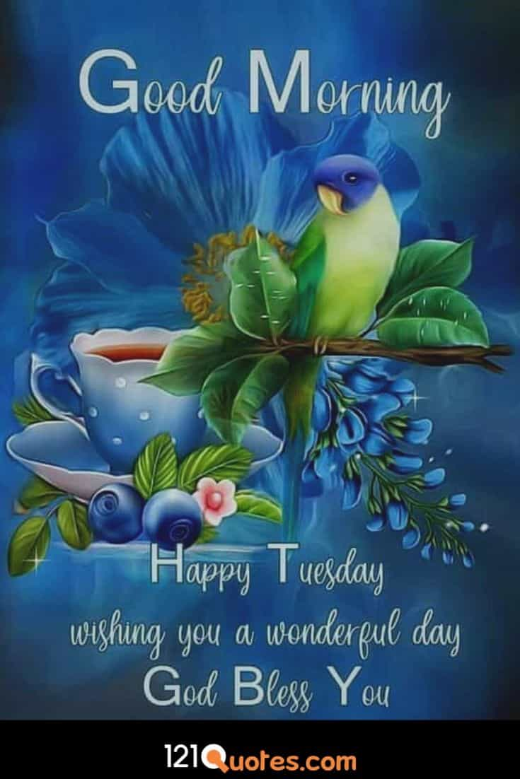 Good Morning Happy Tuesday Wallpaper and Images