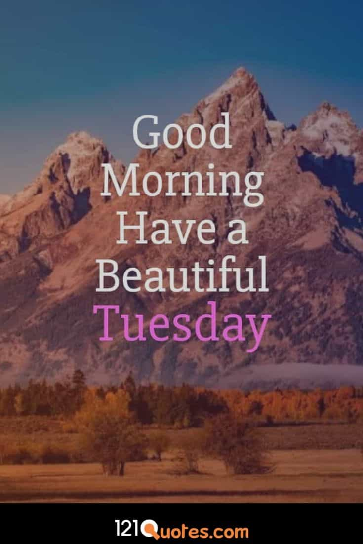 Good Morning Have a Beautiful Tueday Wallpaper with Amazing Background Images