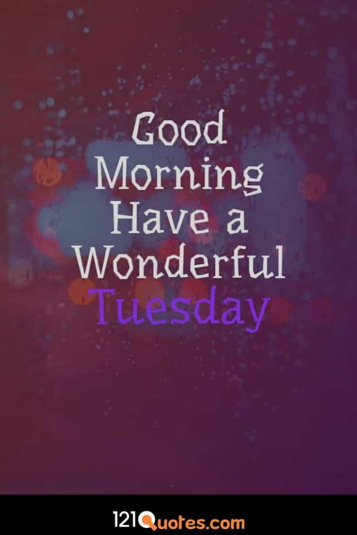 Good Morning Have a Wonderful Tuesday Images Wallpaper Photos and Pictures