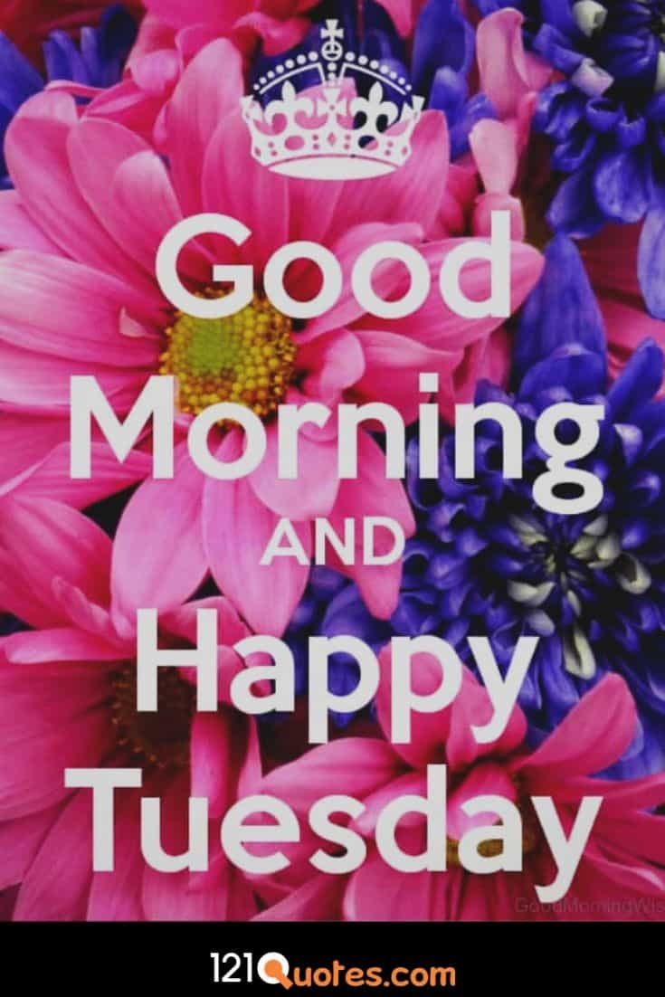 Good Morning and Happy Tuesday Wallpaper