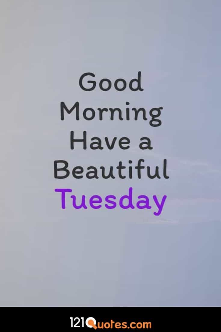 Good Morning have a Beautiful Tuesday Images Wallpaper and Greetings
