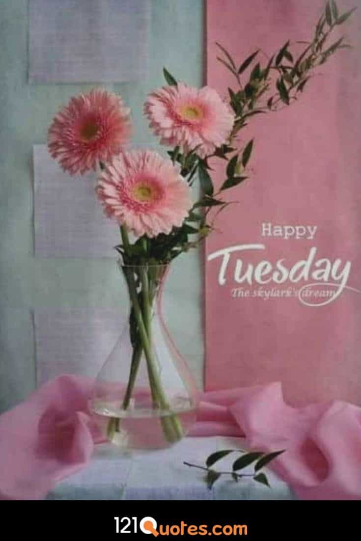 Happy Tuesday Wallpaper with Pink Flowers