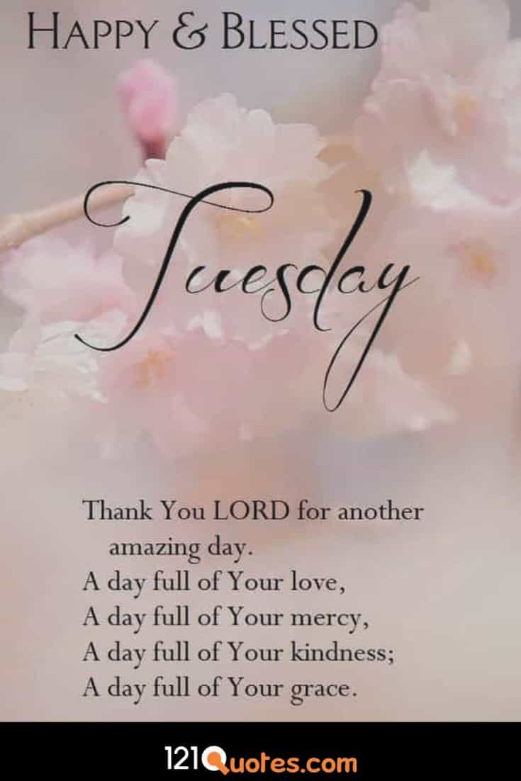Happy and Blessed Tuesday Wallpaper
