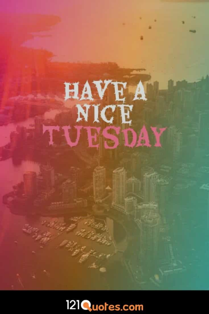 Have a Nice Tuesday Wallpaper with Beautiful Background Wallpaper