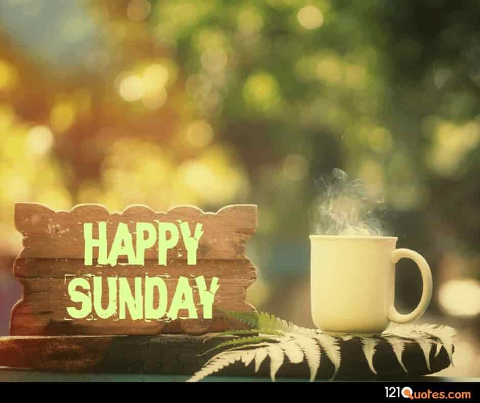 good morning happy sunday hd wallpaper
