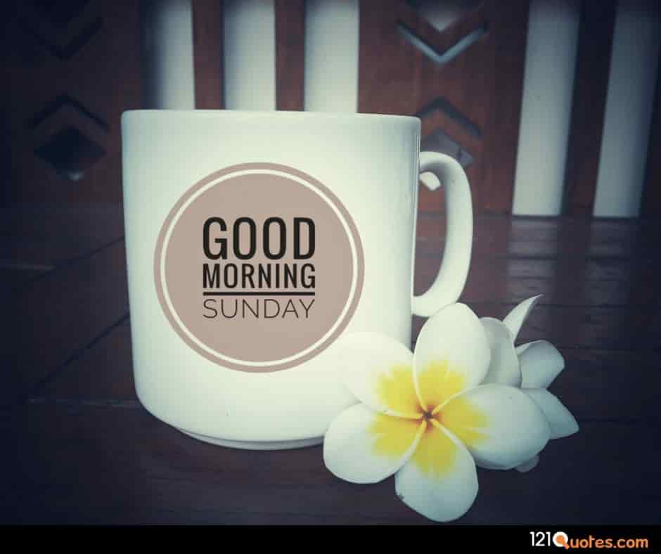 good morning sunday images with flowers hd