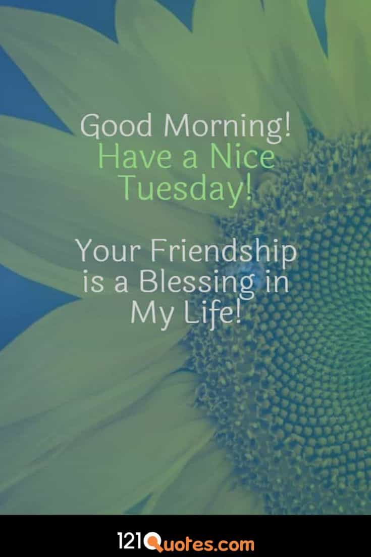 good morning tuesday flowers images and messages