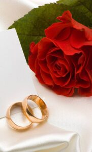 red rose wallpaper with beautiful rings free download for mobile