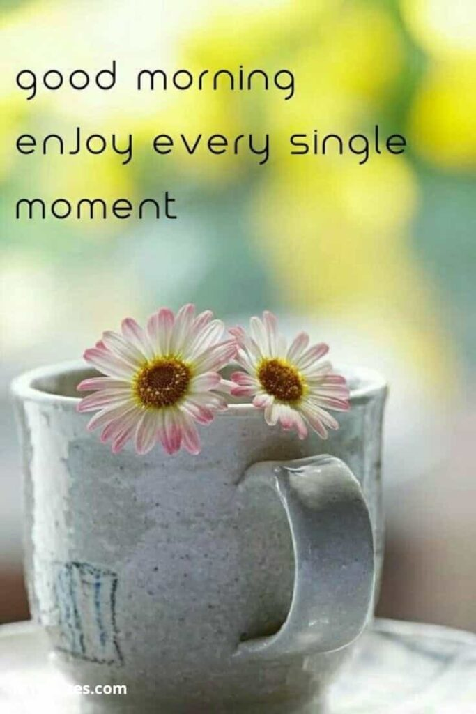 Good Morning Enjoy every single moment