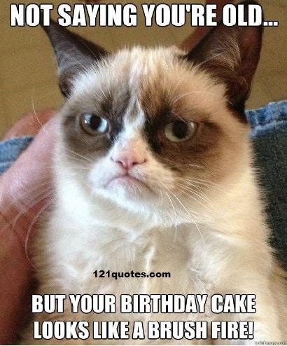 Grumpy Cat Funny Happy Birthday Meme