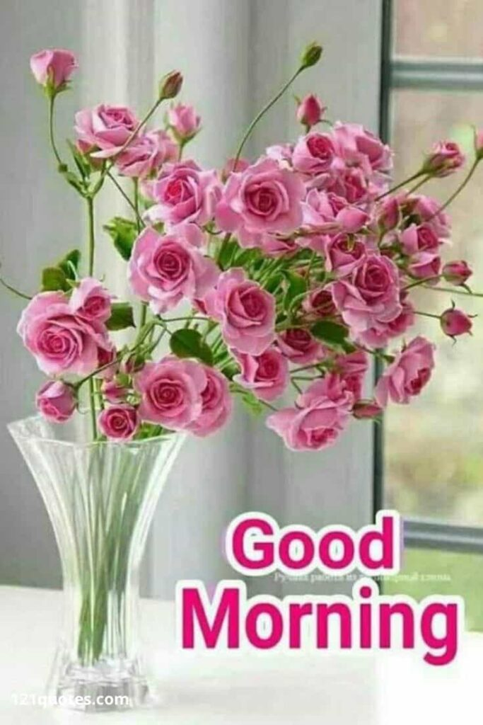 good morning flowers images free download for whatsapp video