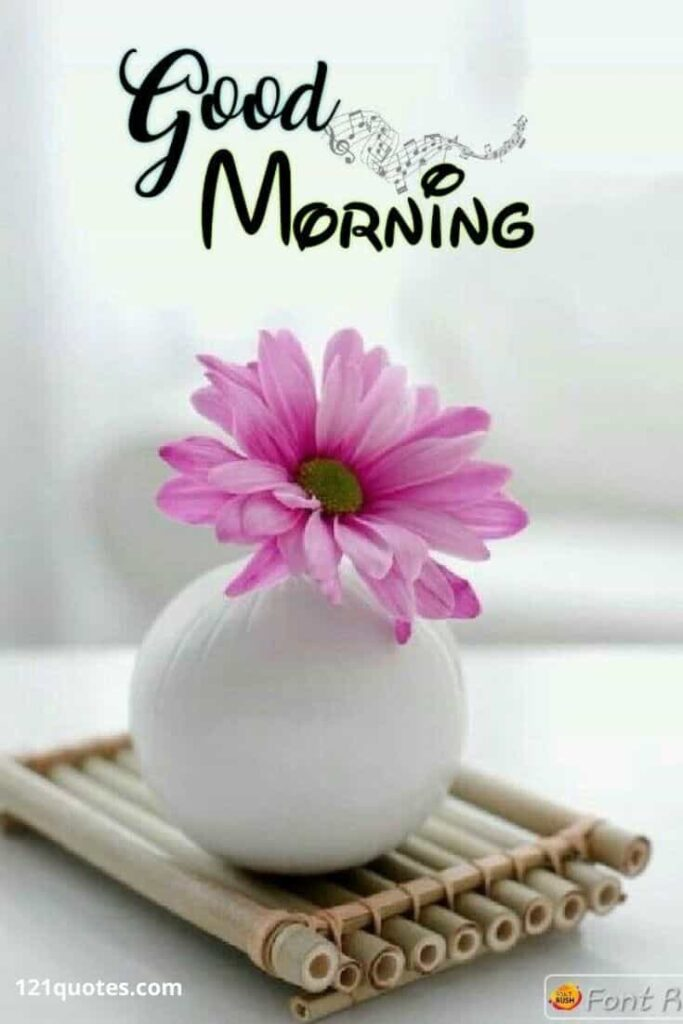 good morning images with flowers latest