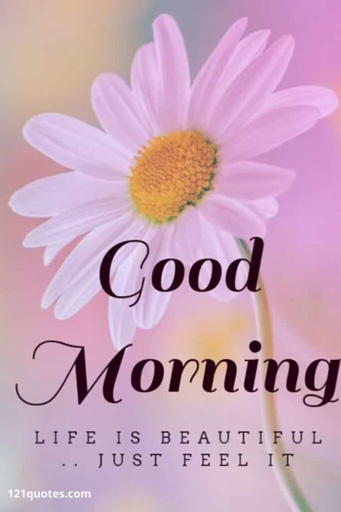 good morning messages with flowers
