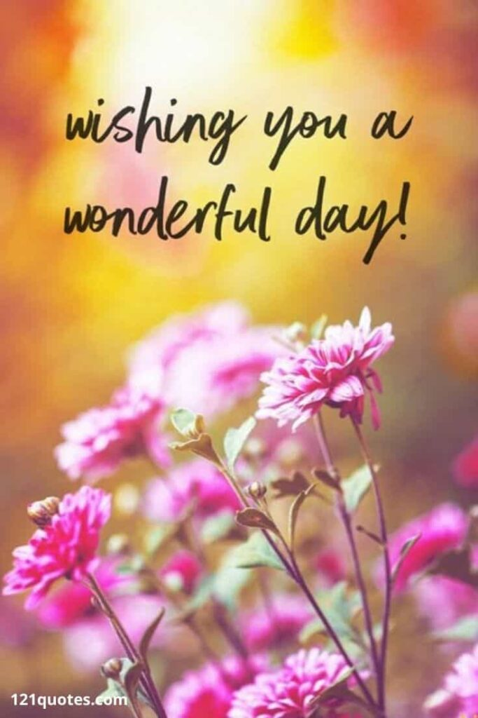 have a wonderful day images with flowers