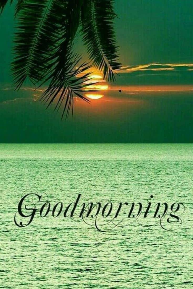 good morning sunrise images download